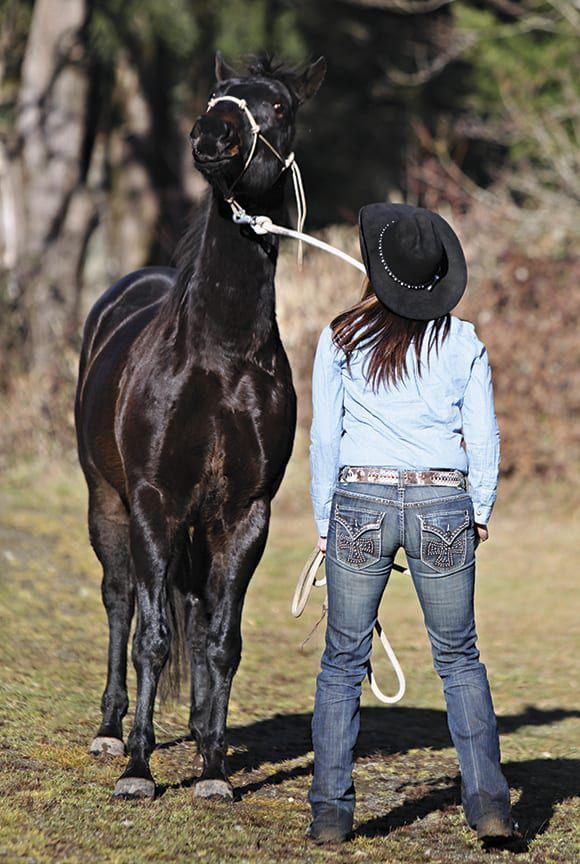 Bad Horse Relationship