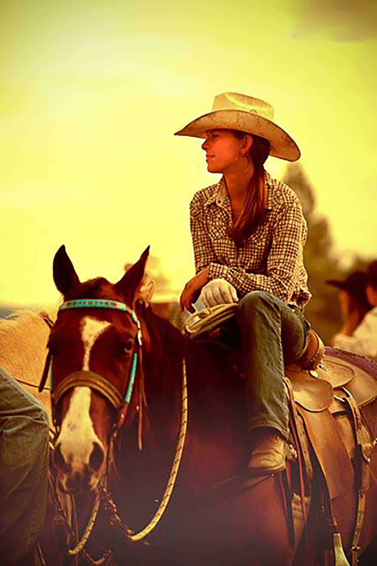 cowgirl-updo-hair