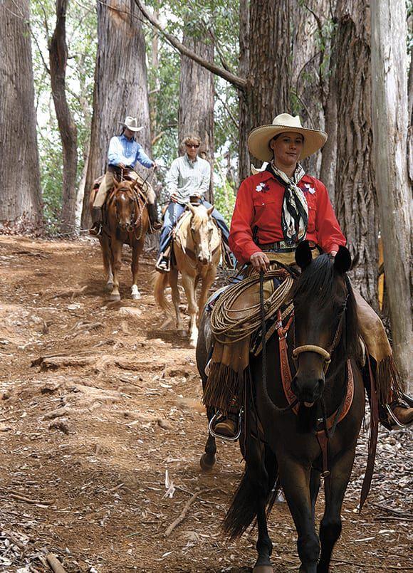 HORSE RIDING ON MAUI