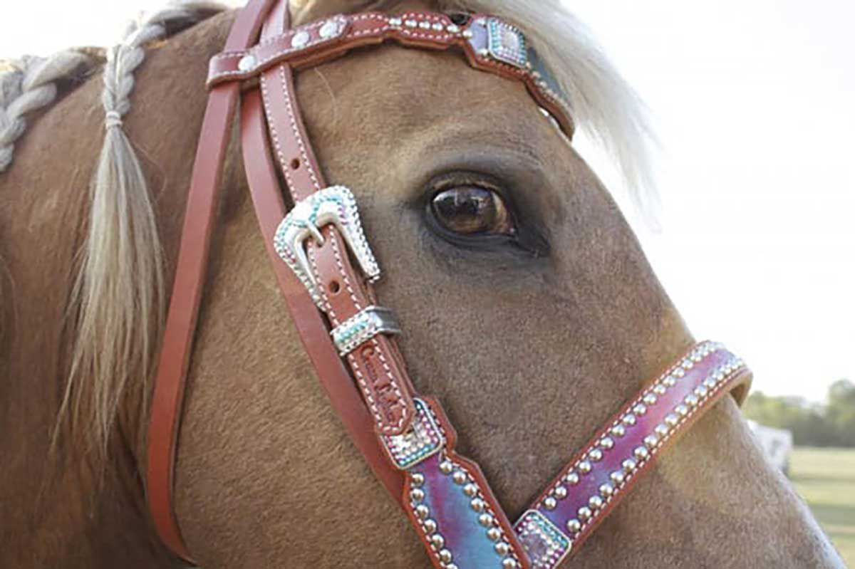 Crown-Leather-Tack
