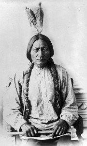 Sitting Bull Nokota Horse owner