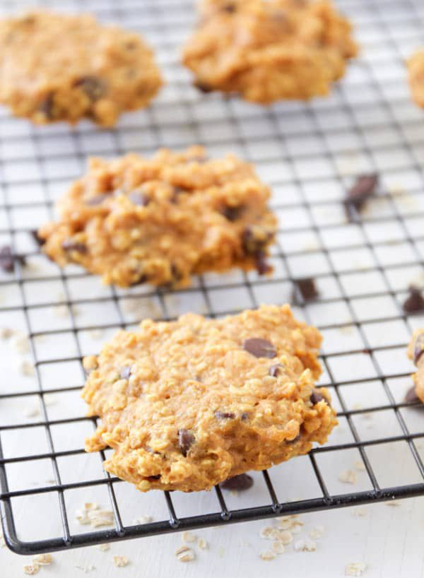 Pumpkin-Oatmeal-Chocolate-Chip-Cookies