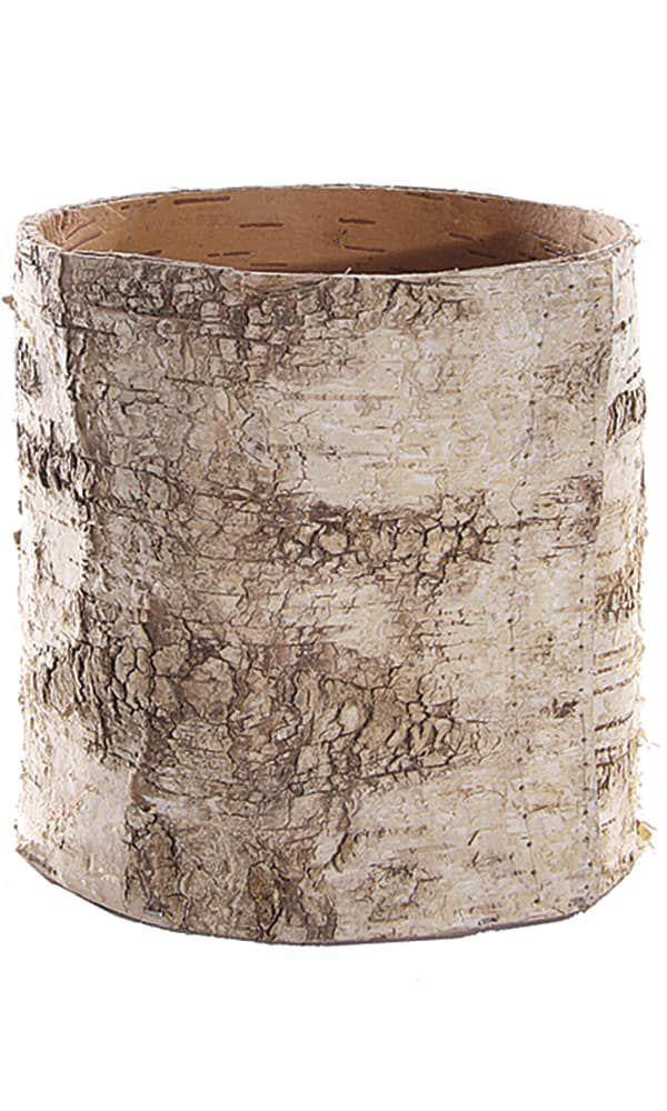 BirchCylinder-2