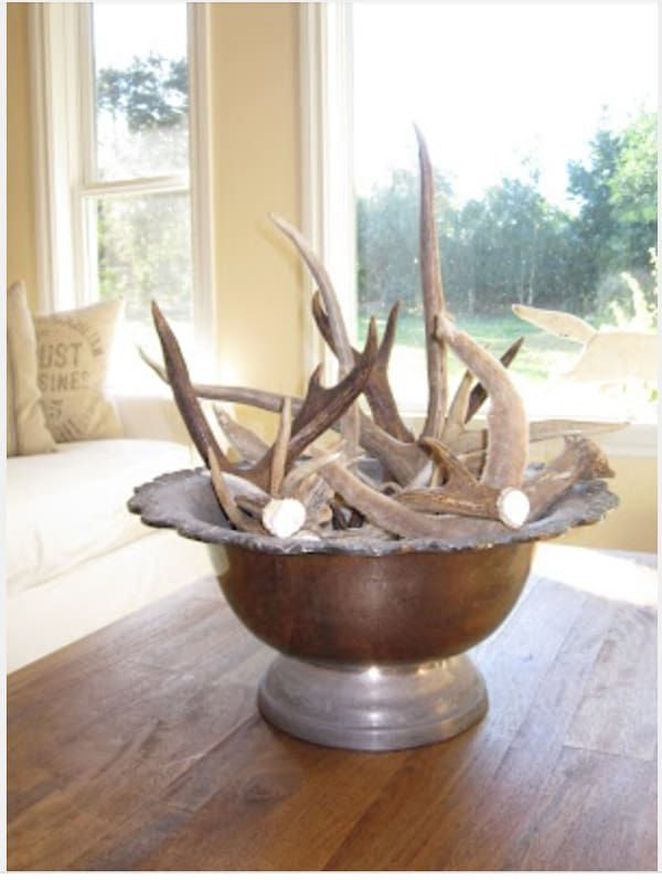 Antlers-in-an-antique-silver-bowl