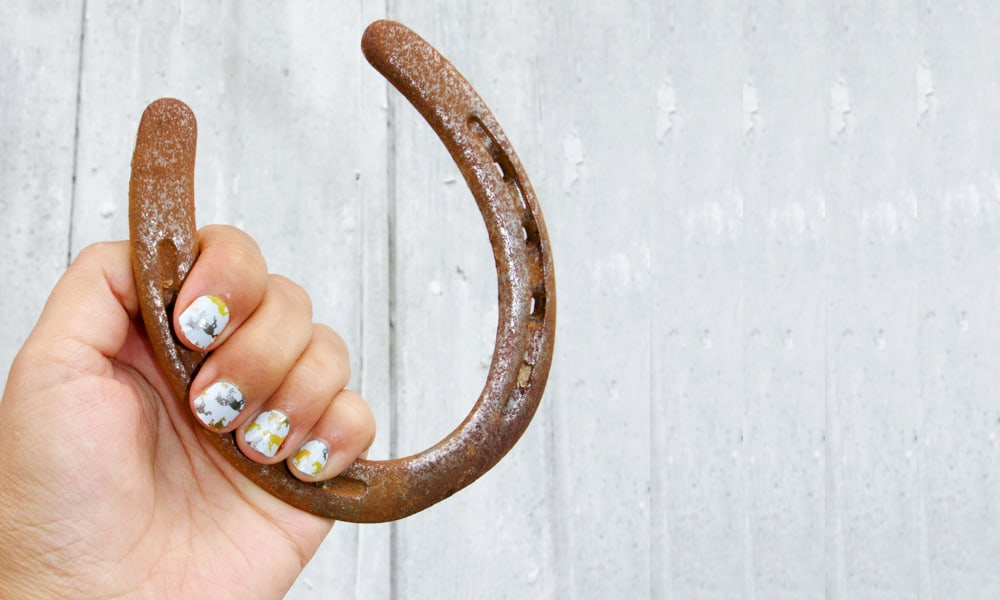 An equine manicure by Horses & Heels