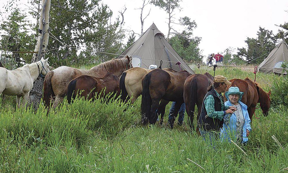 cowgirl update