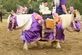 cowgirl-horse-costumes