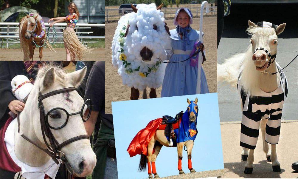 Horse-costumes-lead