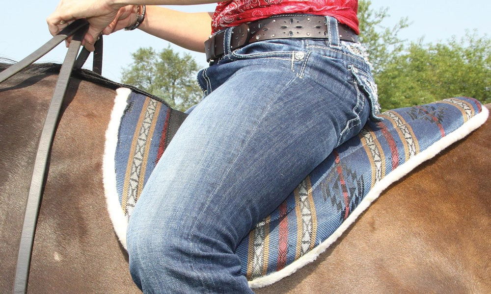 Cowgirl - bareback riding