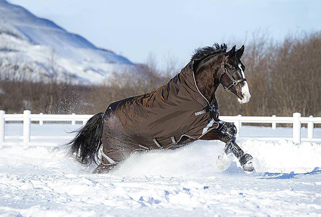 tt_horseware-ireland-2