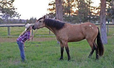 Cowgirl - Glitter