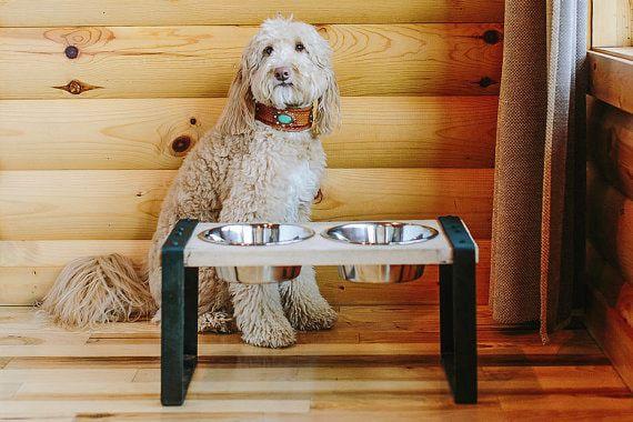 reclaimed dog feeder