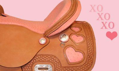 Cowgirl - Pink Saddles