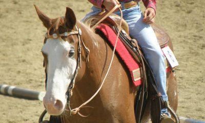 Cowgirl - Neck Rein