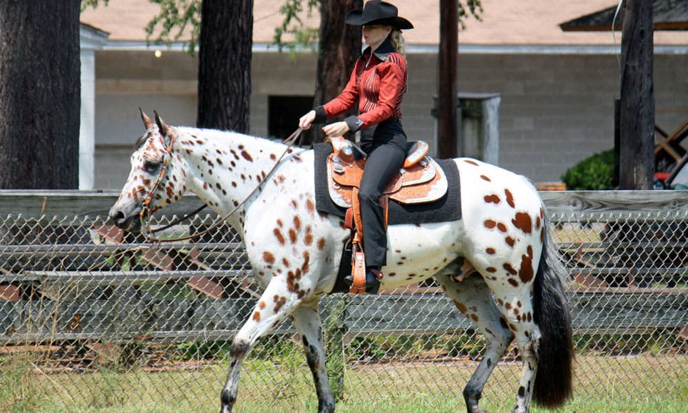 Cowgirl - Extensions