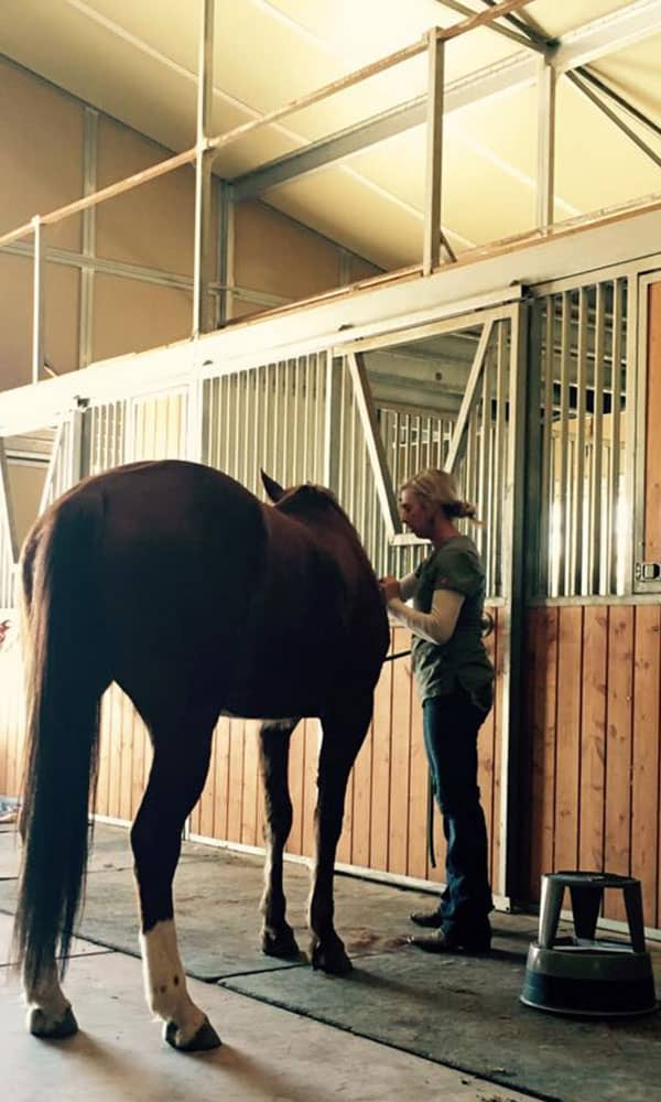 Equine Massage Therapy Ashlee Malone Cowgirl Magazine