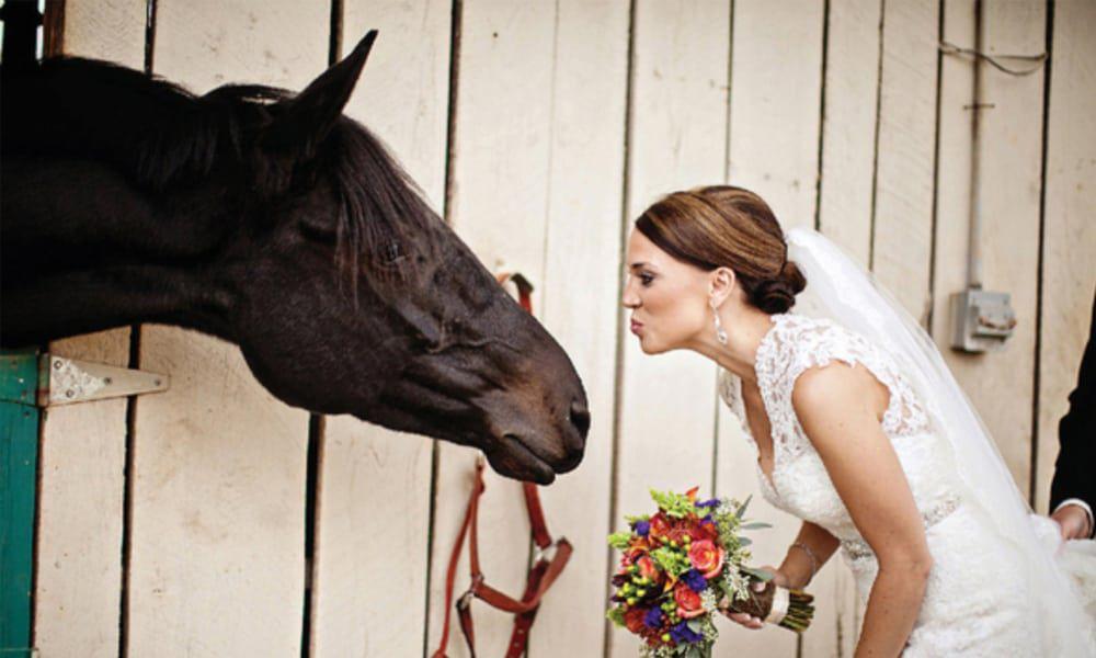 equestrian-wedding