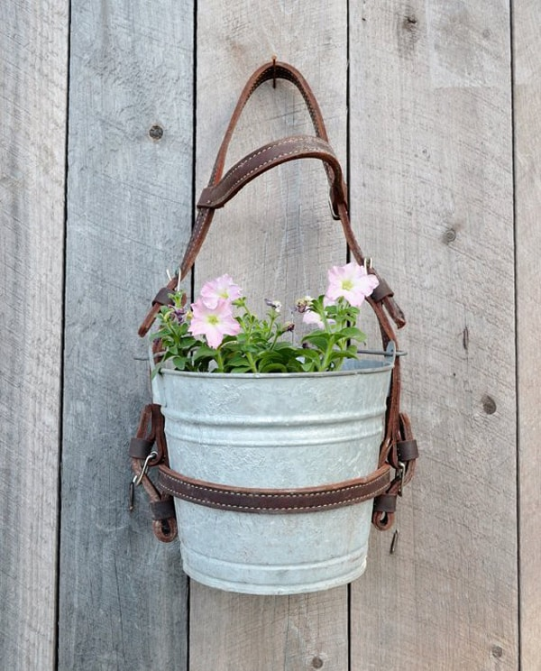 repurposed_metal_bucket_flower_planter_with_leather_horse_bridle