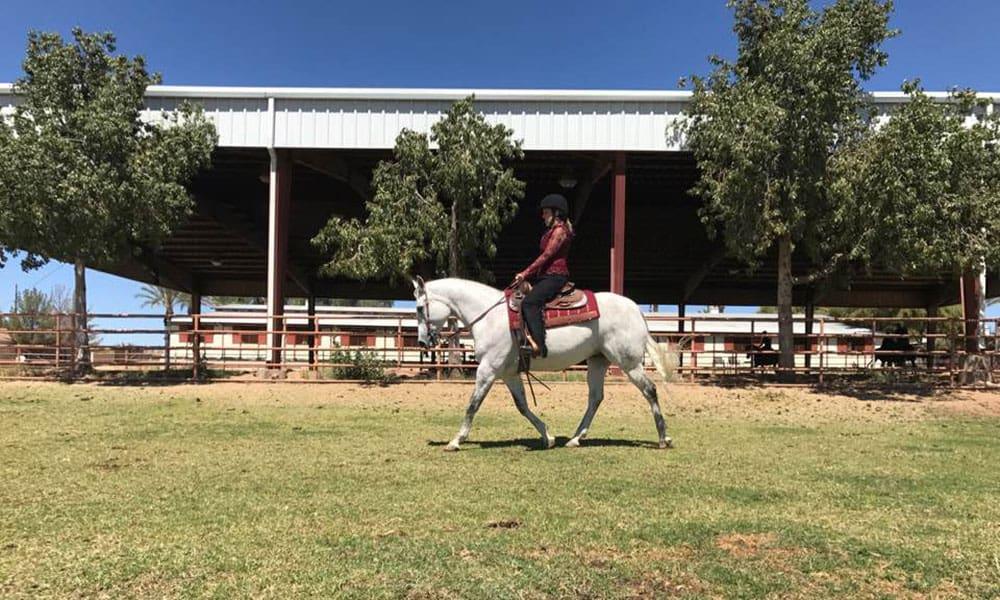 Western Dressage Bein Performance Horses Erin Reid Cowgirl Magazine