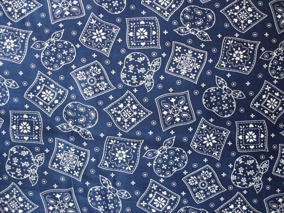 blue bandana fabric