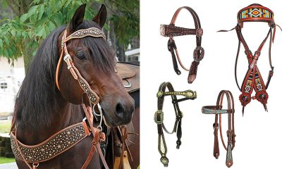 luanns leather headstalls