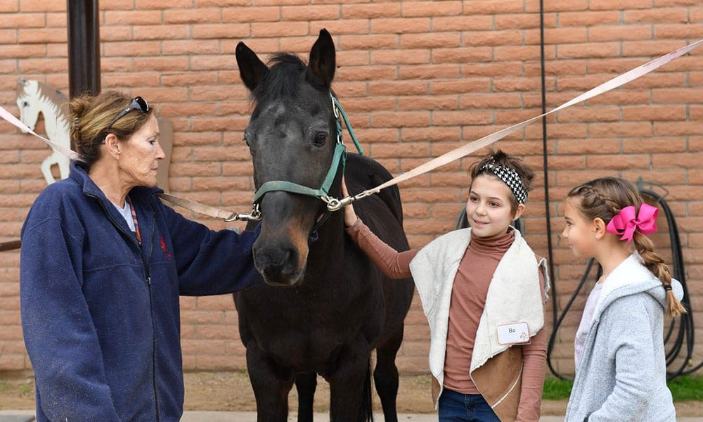 Horses Help Therapeutic Riding Cowgirl Magazine