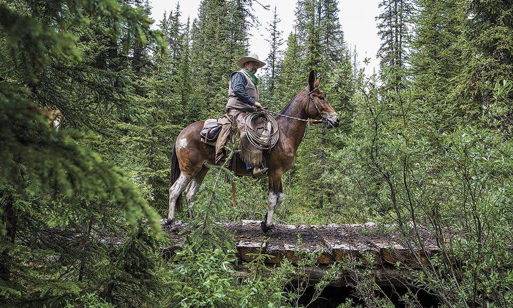 Banff Cowgirl Magazine