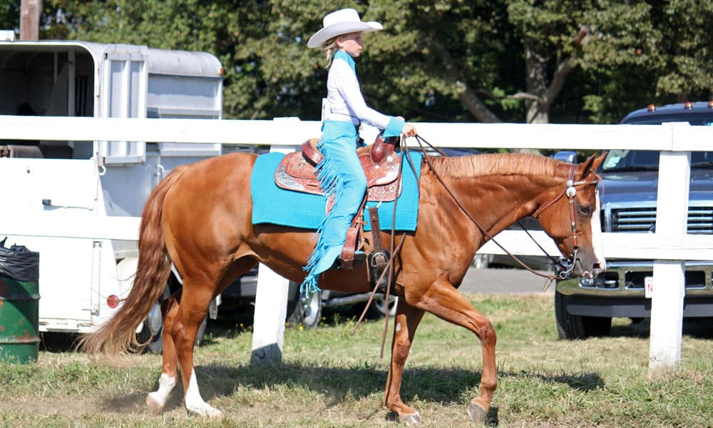 Cowgirl - Show