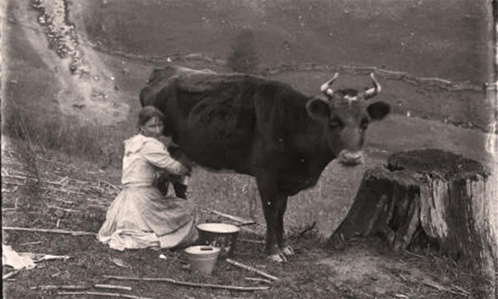 elinore pruitt cowgirl
