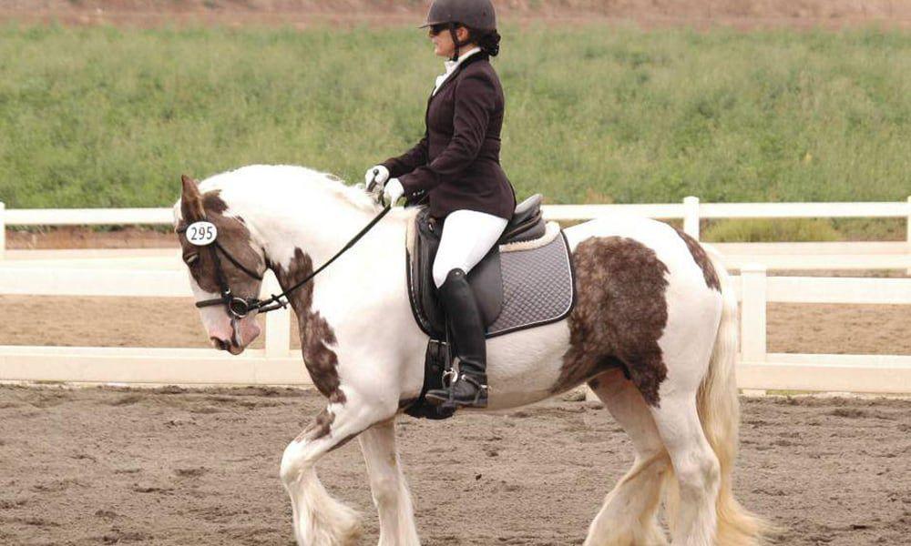 The Gypsy Horse Cowgirl Magazine