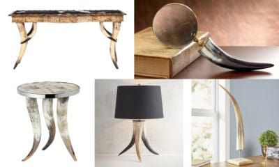 horn decor for your home