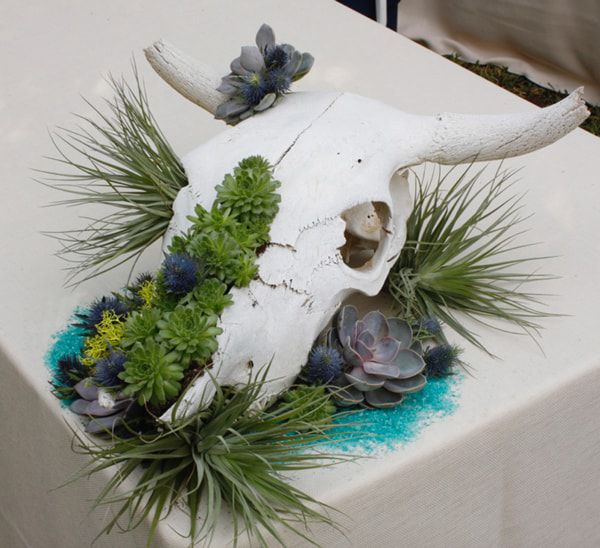 succulent-arrangement