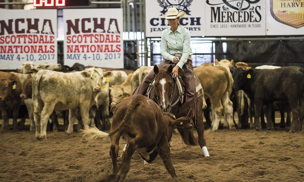 Cutting Horse Tack Trends Cowgirl Magazine