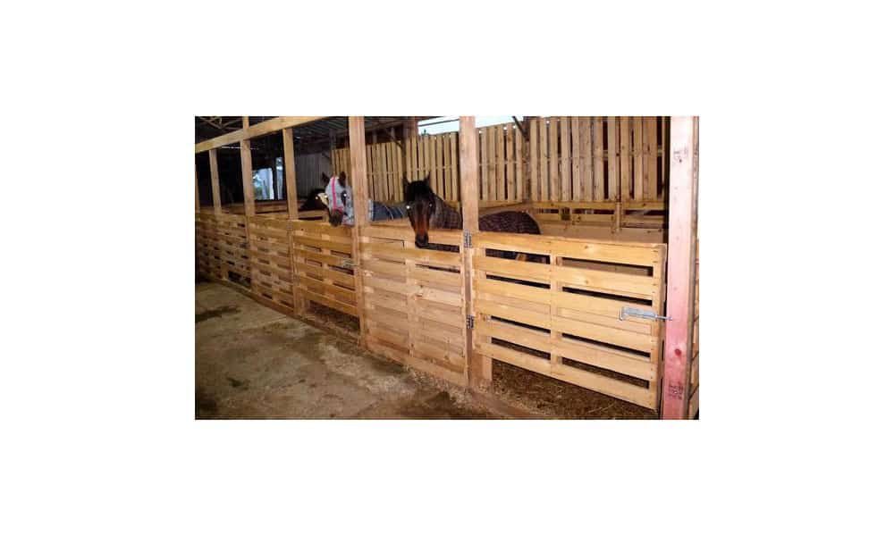Cowgirl - Pallets