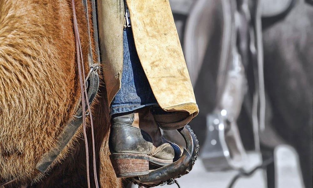 Cowgirl - Wrangler