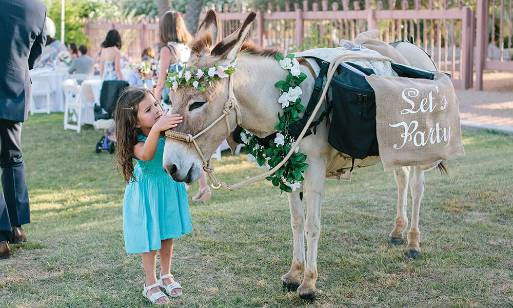 Beer Burros Burro Cowgirl Wedding Cowgirl Magazine