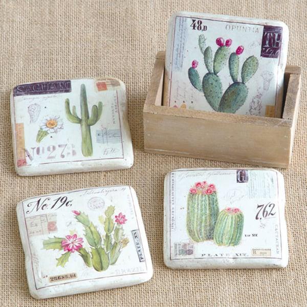 cactus-coaster-set