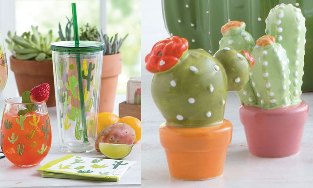 cactus kitchen accessories