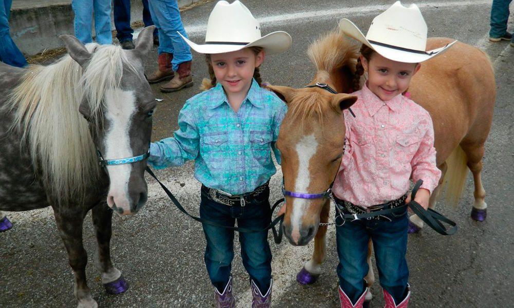 Cute Miniature Horses Cowgirl Magazine