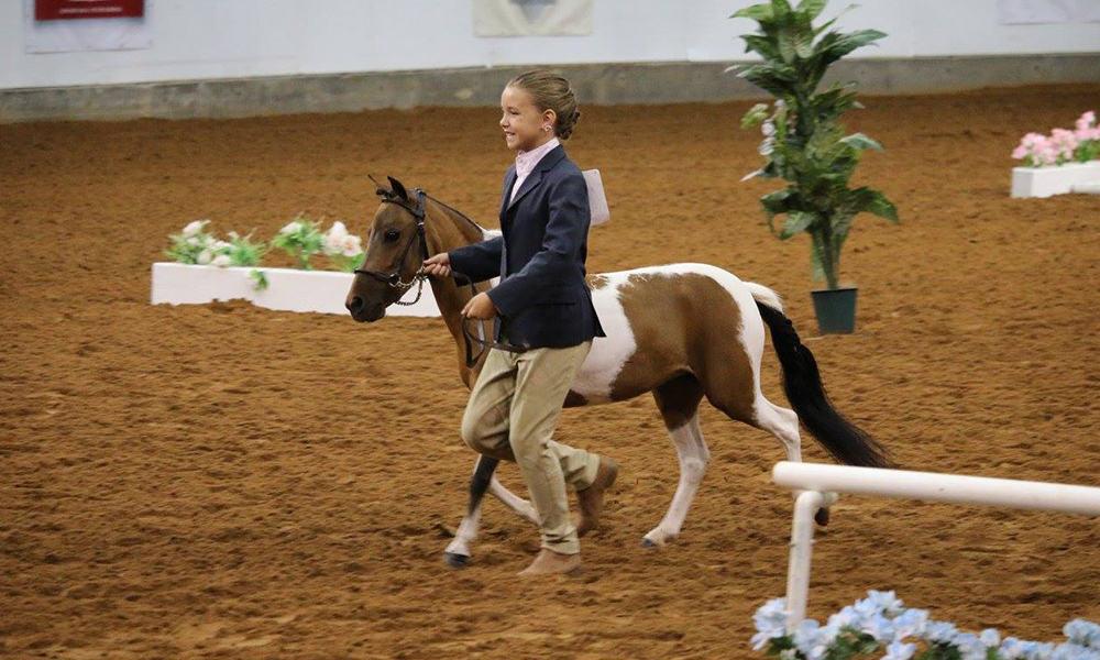 2017 Pinto Horse World Championship Show Cowgirl Magazine