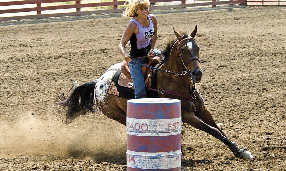 Appaloosas Horse Breeds Cowgirl Magazine