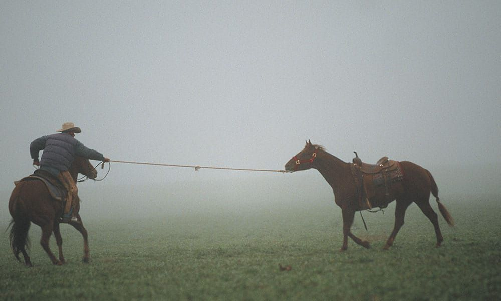 6666 ranch anne burnett windfohr marion anne valliant burnett cattle ranch cowgirl magazine