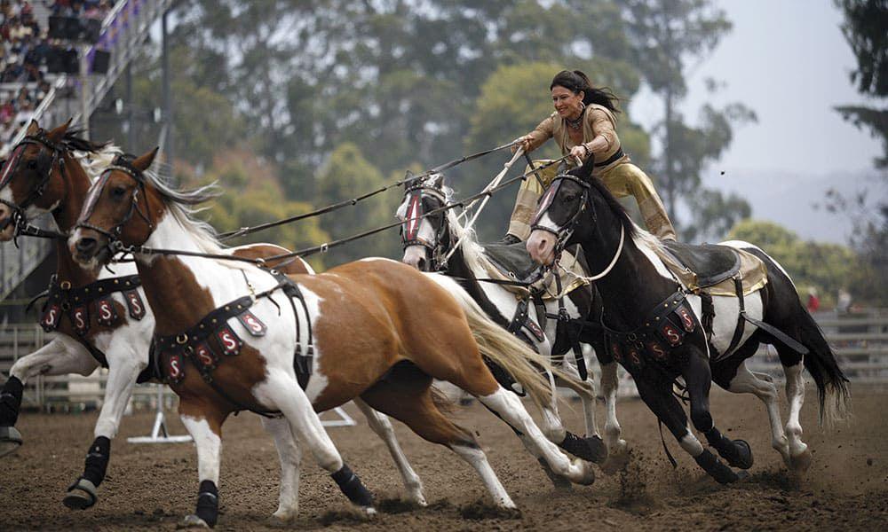 sally bishop trick rider horse cowgirl magazine