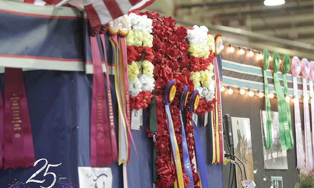 2017 Youth National Arabian & Half Arabian Championship Horse Show cowgirl magazine