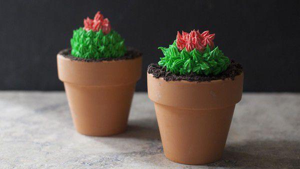 cactus-cupcakes-in-terra-cotta-pots