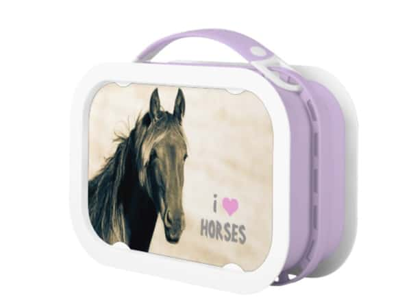 horse print lunch boxes cowgirl magazine