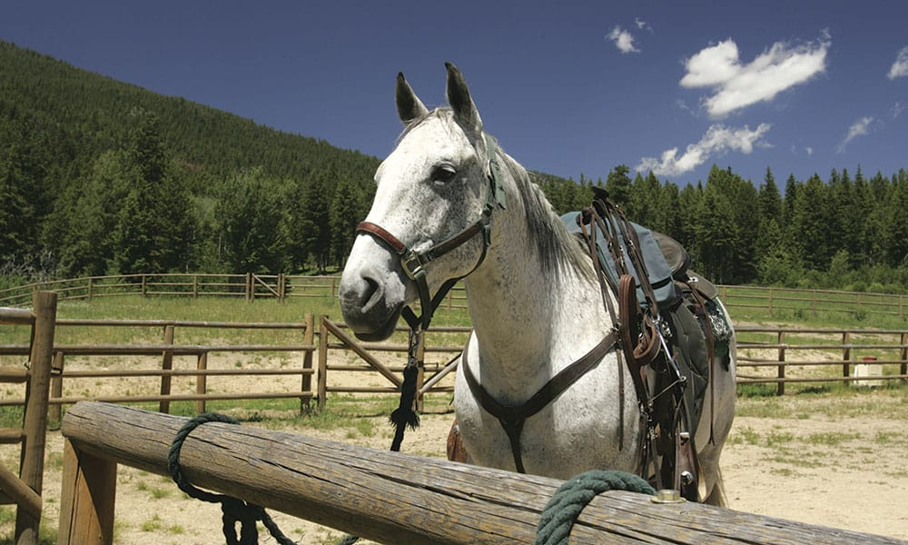 log cabins vacations travel triple creek ranch cowgirl magazine