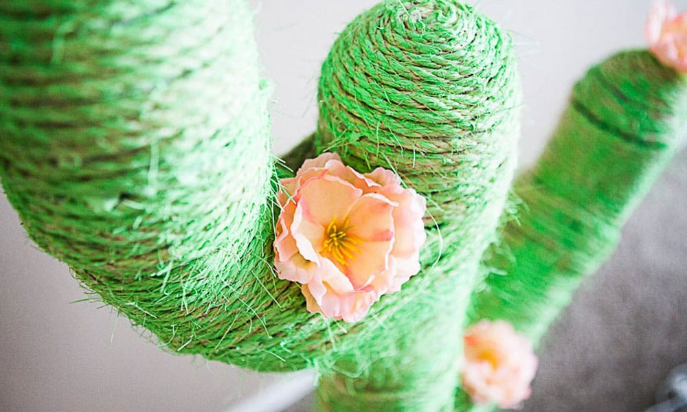 cactus DIY projects cowgirl magazine