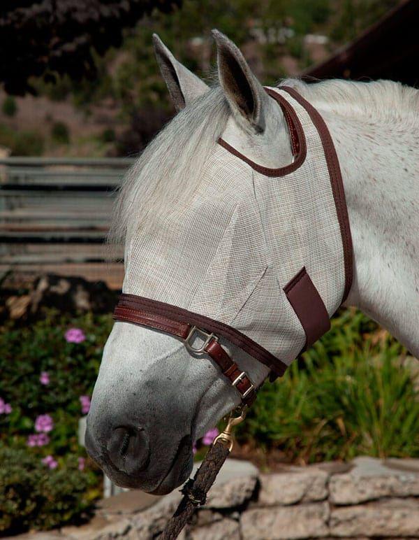 Fly masks horse horses cowgirl magazine