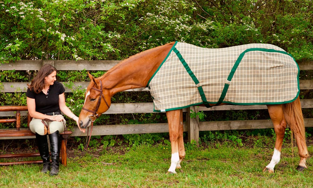 Horse Blankets Colder Months Equine Products Cowgirl Magazine